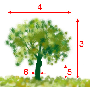 Treeparametersdescription1.jpg