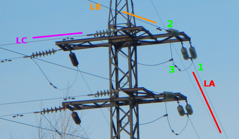 Powerline branch 1.jpg