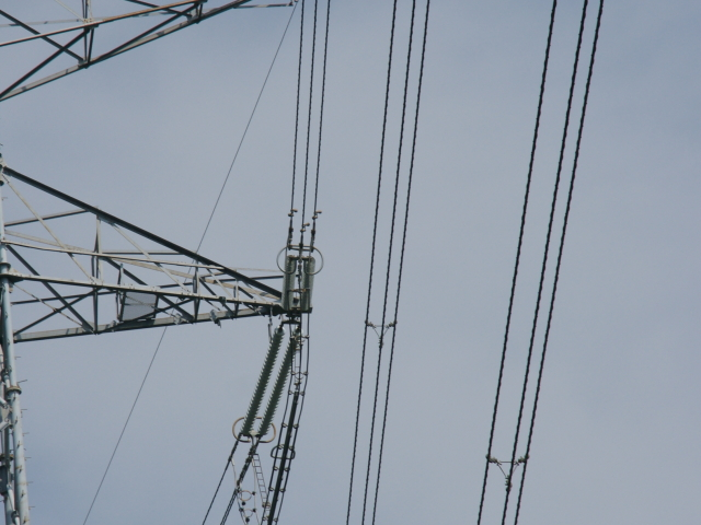 File:JP Power Wires Triple.JPG