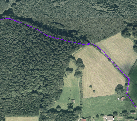 File:GPS error in forest.png
