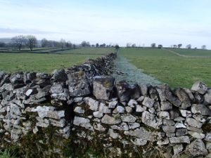 File:Dry stone wall.png