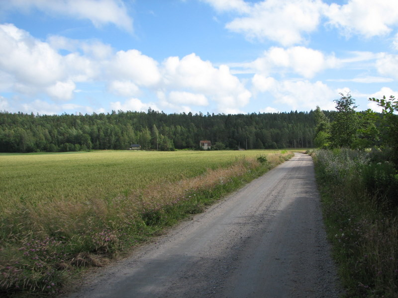 File:Road in Sweden unnumbered.jpg