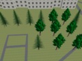 OSM2World natural-tree.png