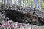 Rock shelter Papula.jpg