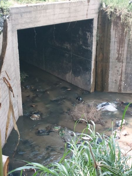 File:Drain covered rectangular culvert.jpg