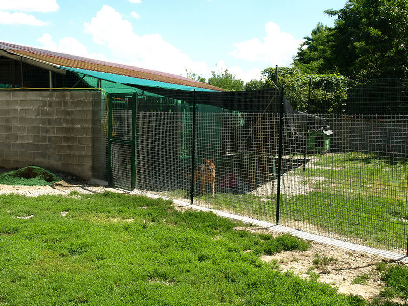File:Kennel 1.jpg