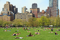 3015-Central Park-Sheep Meadow.JPG