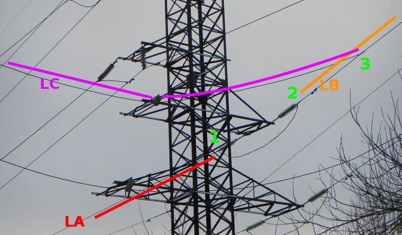 File:Powerline branch 2.jpg