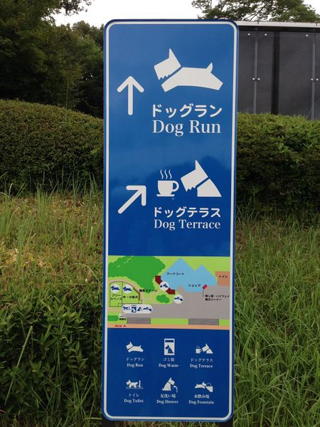 File:Signfordog.jpg