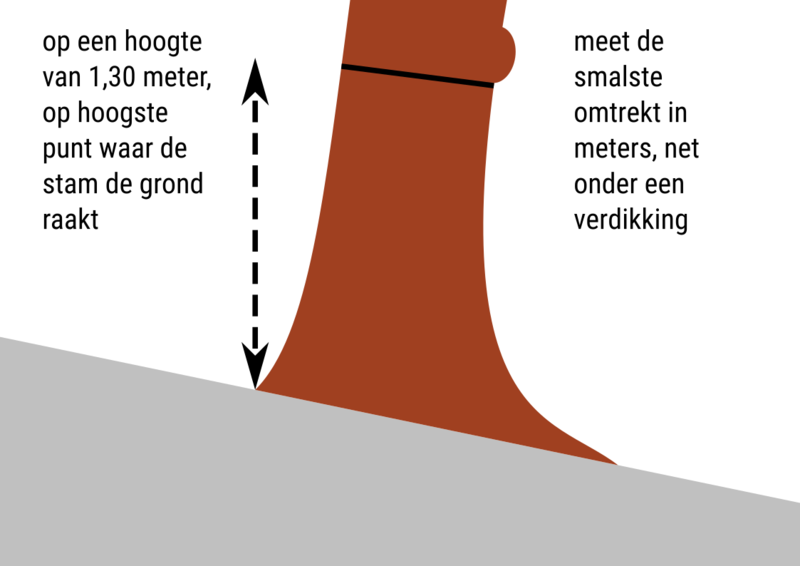 File:Circumference-nl.png
