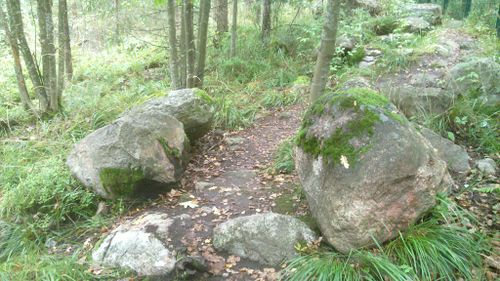 Trail-Example-Trail-and-stones.jpg