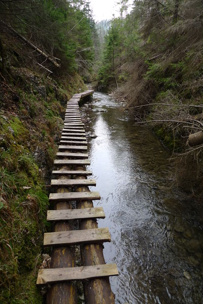 File:Ladder bridge.jpg