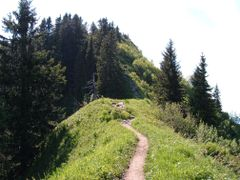 One example for Merkmal : Wandern