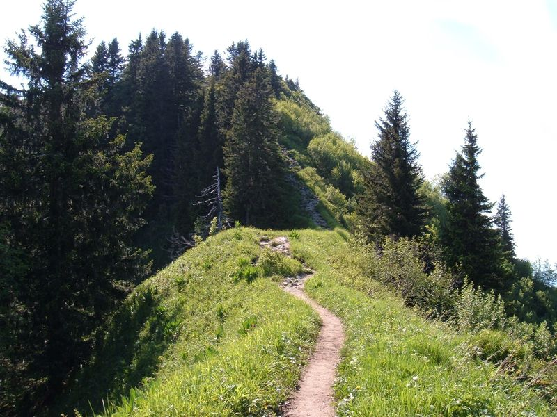 File:Mountain hiking.jpg