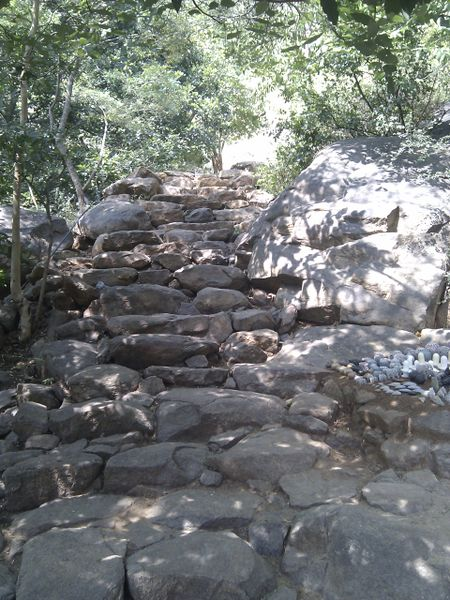 File:Steps on mountain trail.jpg