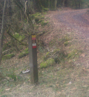 Marked trail pole.jpeg