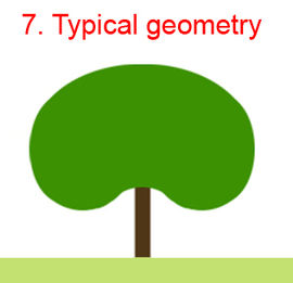 Treeparametersdescription2.jpg