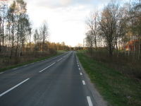 Road in Sweden at Ullene1.jpg