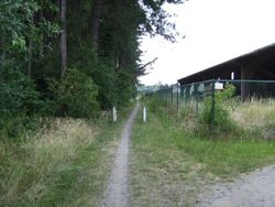 Belgium road path unpaved.jpg