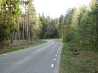 Road in Sweden at Ugglum.jpg