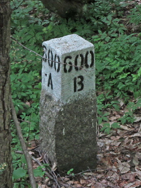 File:Białowieża Forest Compartment Marker.jpg
