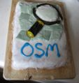 London 8th OSM Birthday Cake.JPG