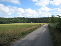 Road in Sweden unnumbered.jpg