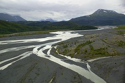 Braided river outwash plain with extensive patches of river shingle