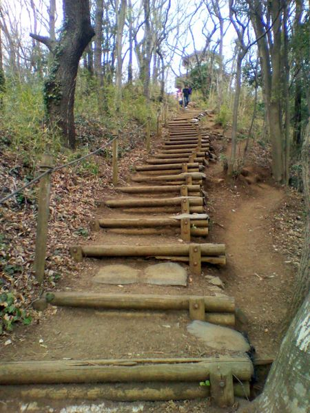 File:Steps wood.jpg